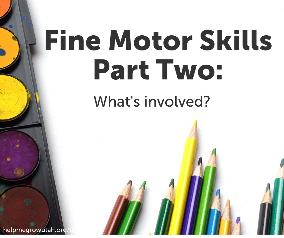 Fine Motor Skills Part Two: What's Involved?