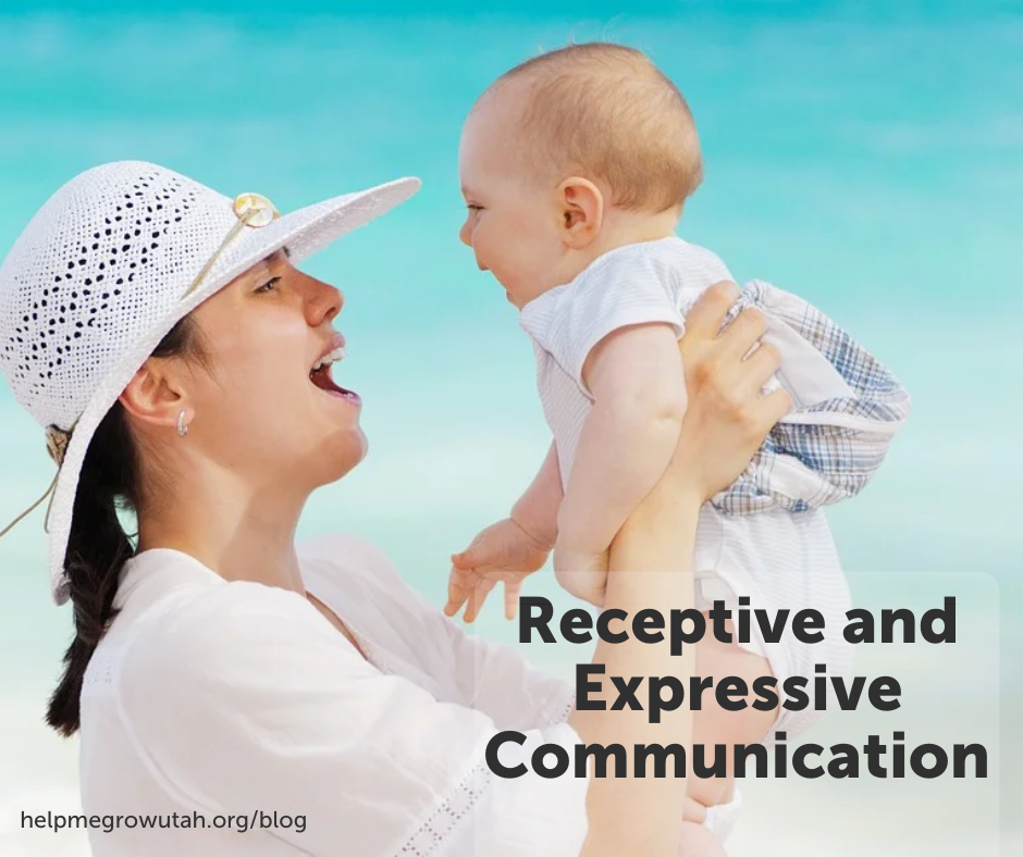 Receptive and Expressive Communication Explained