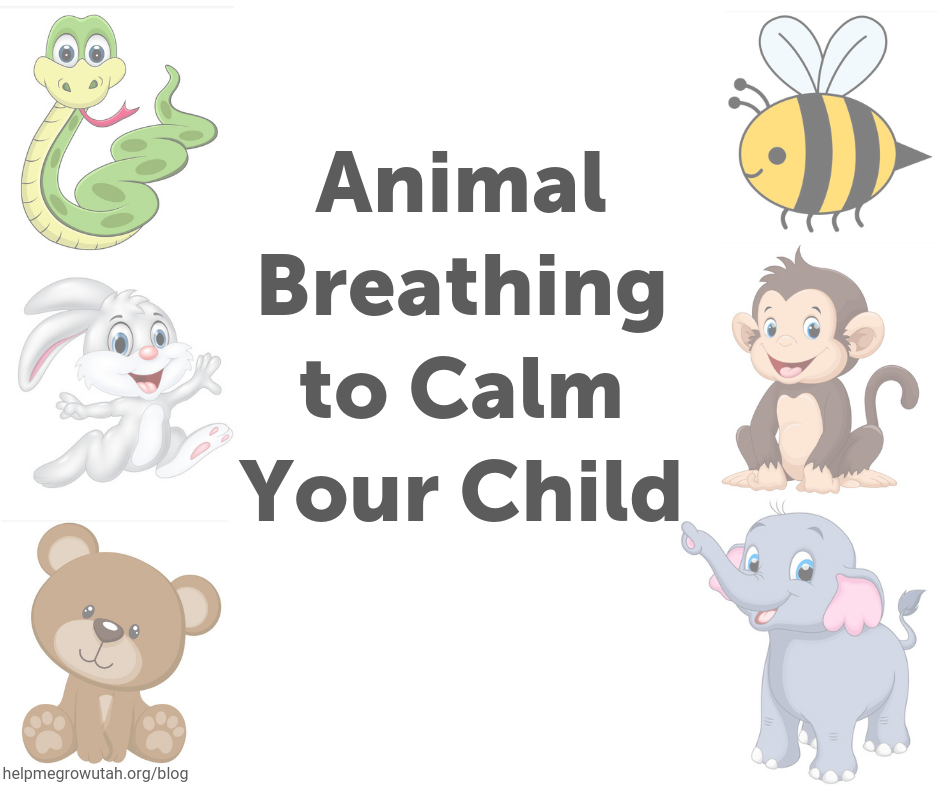 Animal Breathing to Calm Your Child